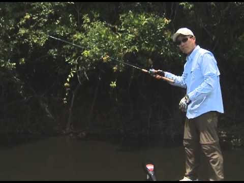 Dicas do Nelson Nakamura - Pesca do Tucunaré